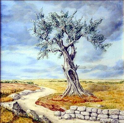 The Olive tree square